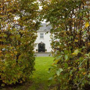 Fully-grown-hedges-ireland-24